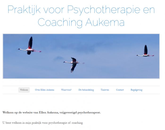 Aukema Psychologie